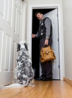 Rituel de départ et anxiété de séparation